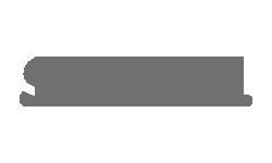 TI-Rex desenvolvimento de websites - Cliente Skidun